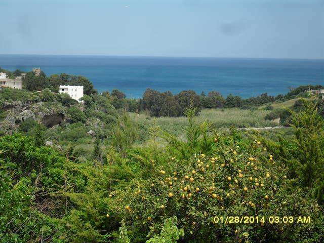 Cozy Sicilian Country House - Castellammare del Golfo - Dům