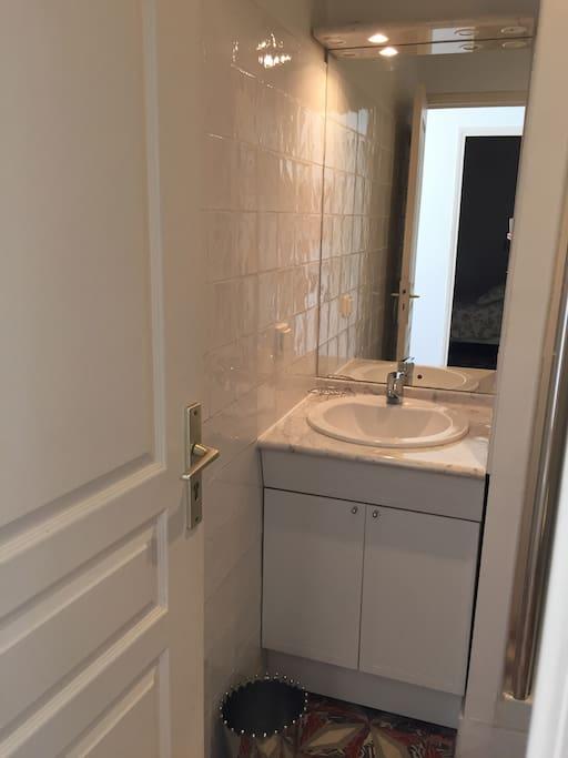 salle de bain douche et toilette
