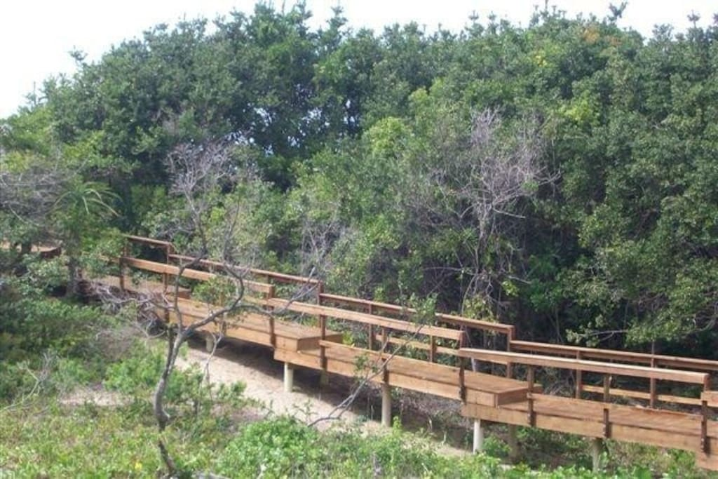 The rustic wooden bridge that winds through a small indigenous forest to the beach