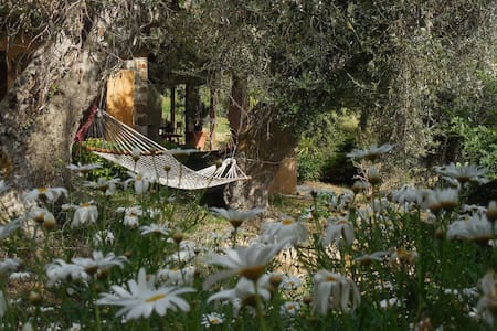 always paradise - Castelbuono - Bed & Breakfast