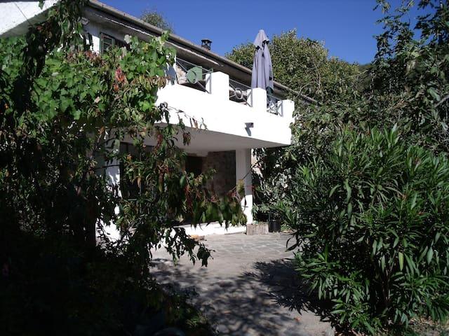 Rustico mit großem Grundstück - Vasia - House