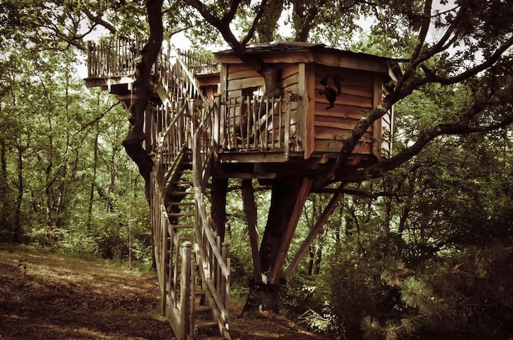 Cabane Jaspée d'Arbrakabane - Peyrissas - Treehouse