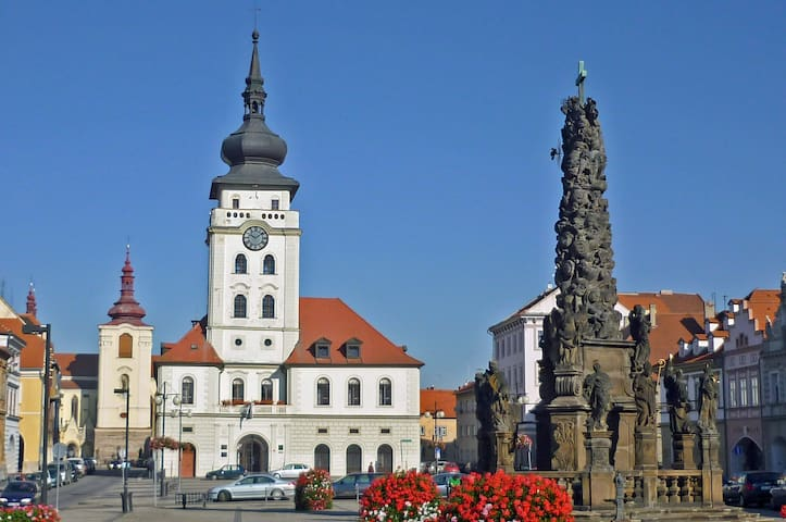 The whole appart in the historical center of Zatec - Žatec - Apartment