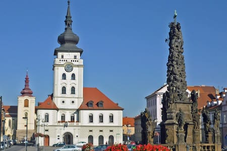 The whole appart in the historical center of Zatec - Žatec - Apartmen