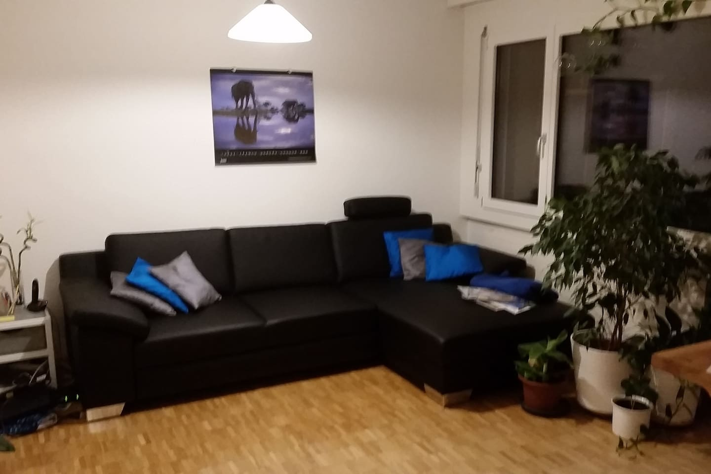 Wohnzimmer mit Ausziehcouch