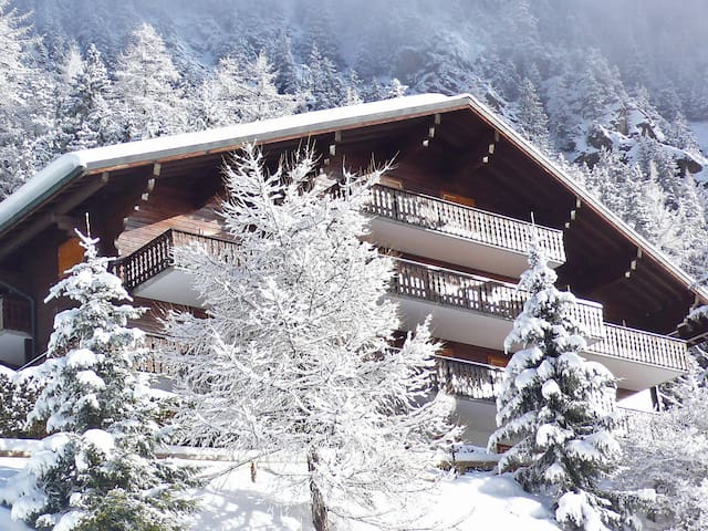 Apartment La Colline in Champex