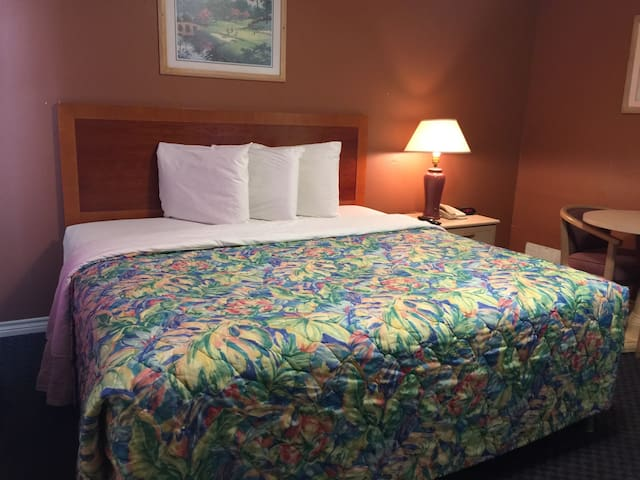 Esquire Inn & Suites - Single King Size Room - Beeville - Outro