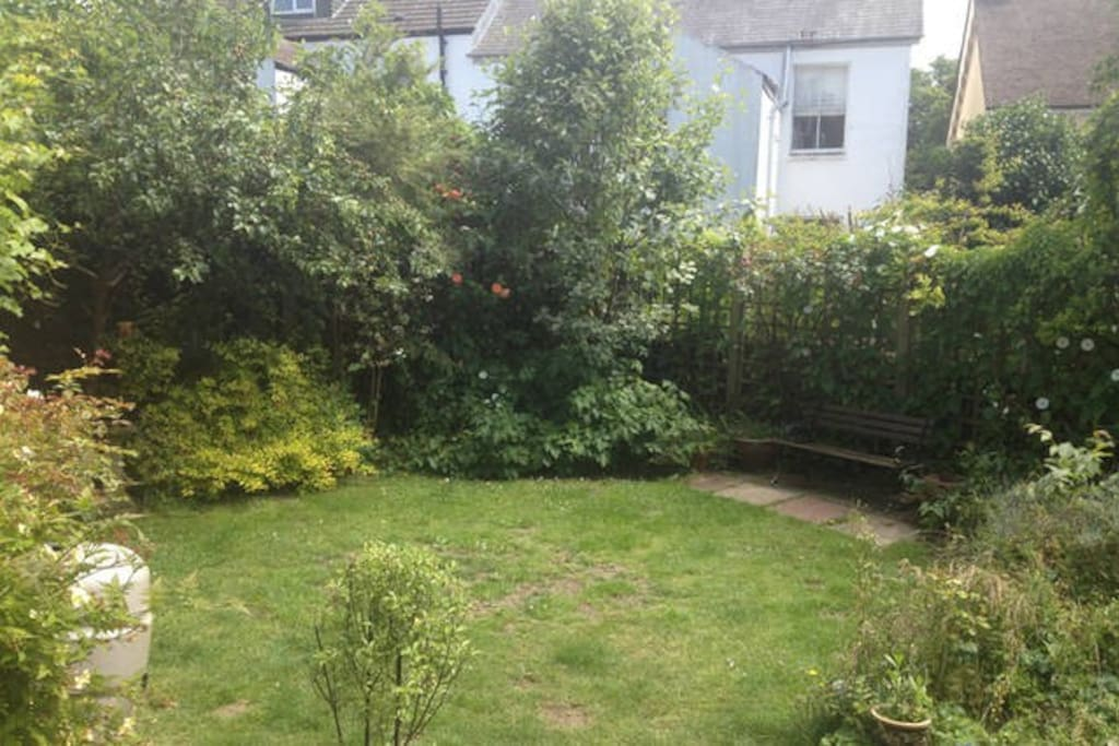 The back garden, which you are free to use at your leisure.