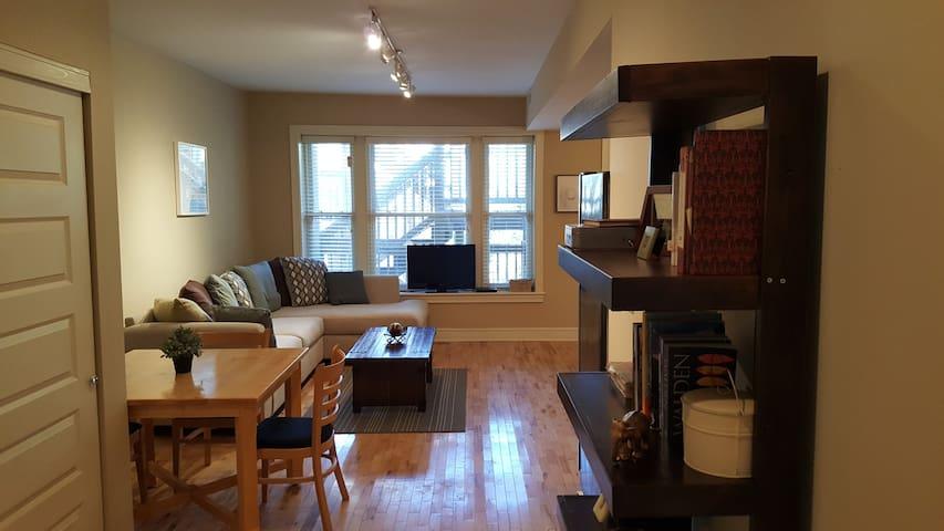 2 BR, 2 Bath Lovely SLU Adjacent Full Apartment! - St. Louis - Apartment