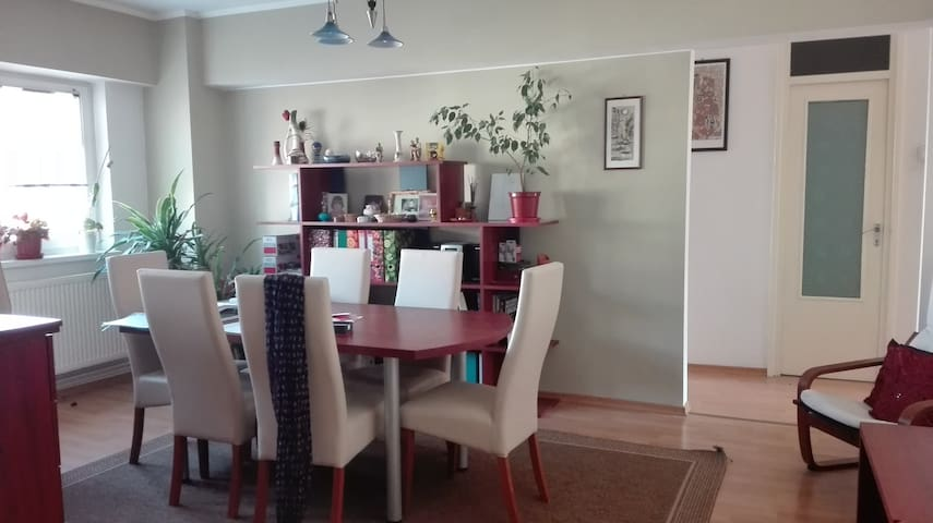 H&E apartment - Miercurea Ciuc - Appartement
