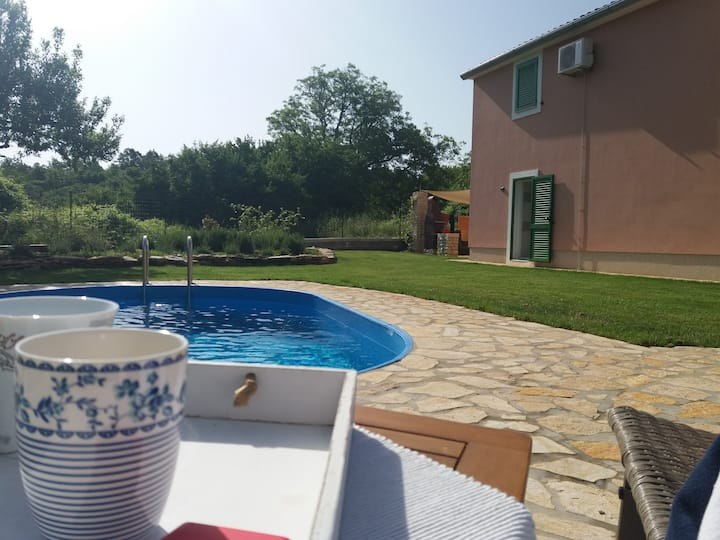 Villa Malini in the heart of Istria with a pool