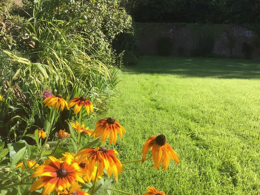 Summer Flowers in the Listed Walled Garden