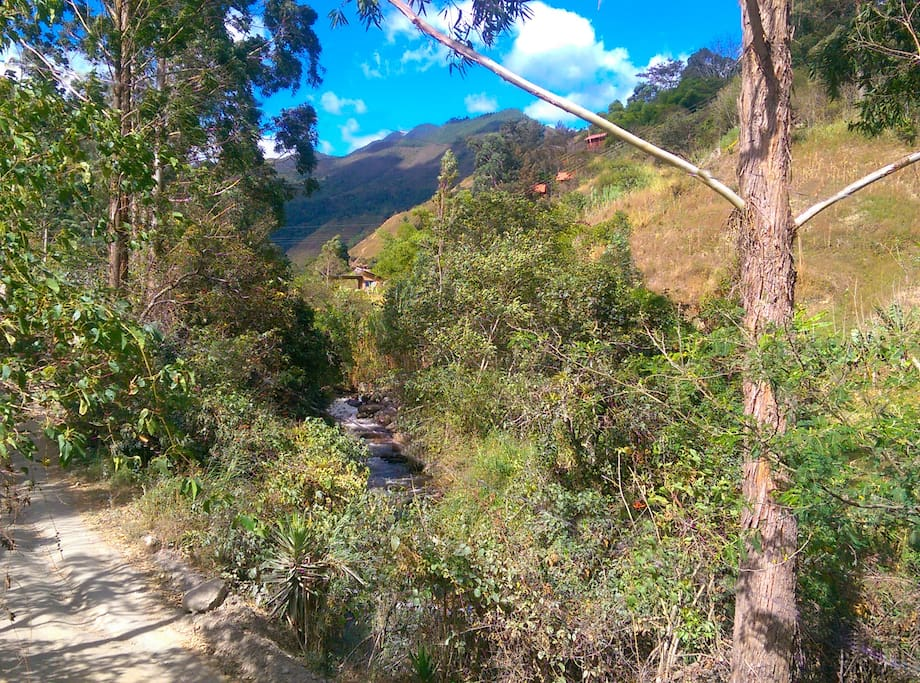 Upvalley view from Riverside cottage -   Vilcabamba