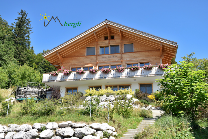Im Bergli - Ferienwohnung- Goldiwil