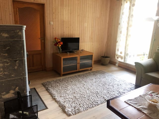 3 bedroom apartment near the city center