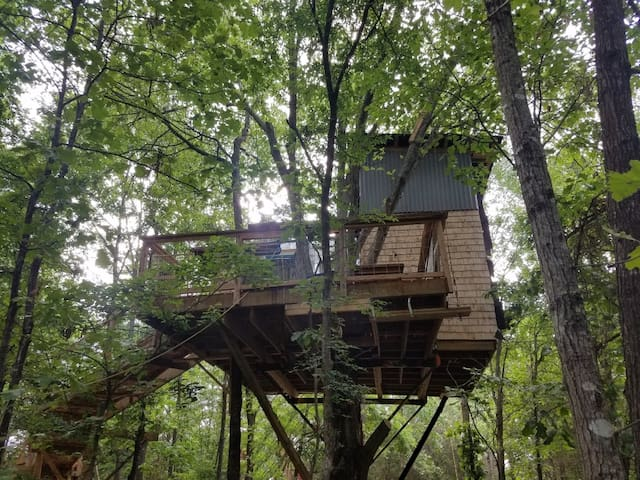 Choctaw Treehouse from the West