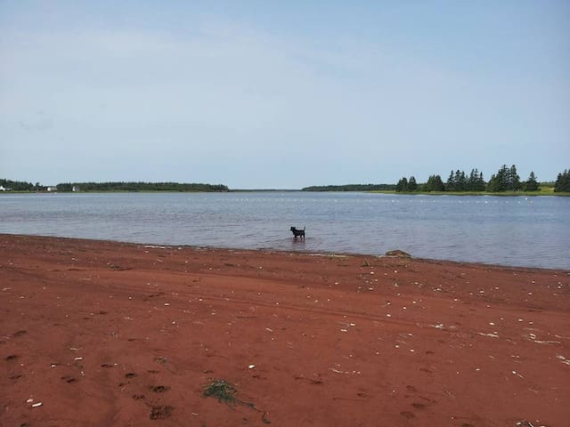 red sand beach ~ make a dirt shirt of your own or for someone you love back home <3