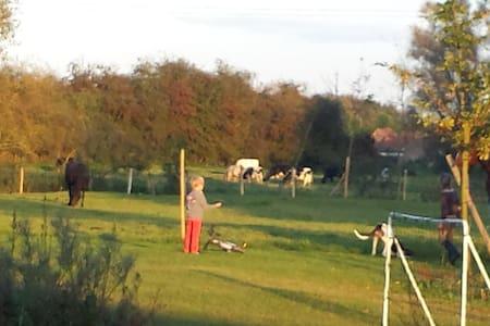 Chambre dans une ferme rénovée - Willems