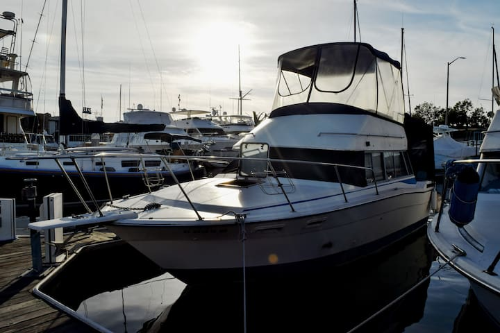 32' Powerboat With Full Canopy in Newport Harbor - Newport Beach