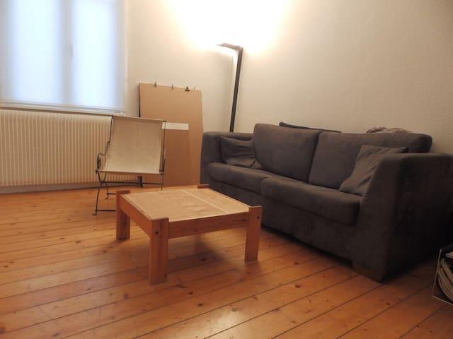 Appart cosy rdc maison campagne proche Strasbourg - Geispolsheim - Appartement