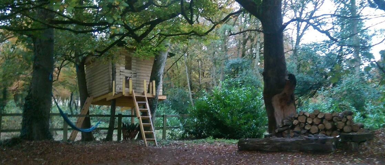 Heathfield Treehouse - Glamping - Kilmeedy - บ้านต้นไม้