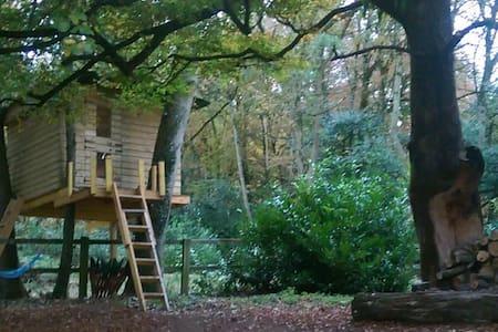 Heathfield Treehouse - Glamping - Kilmeedy - Cabana en un arbre