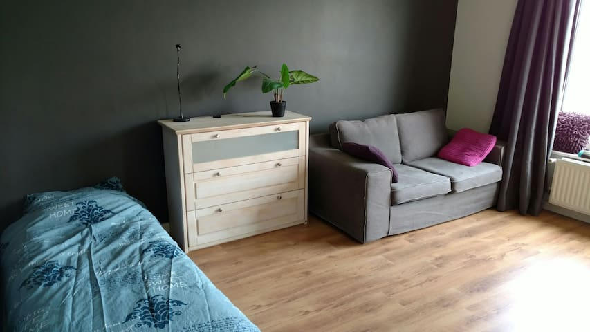 Ruime, nette kamer in centrum! - Nijmegen - Apartment