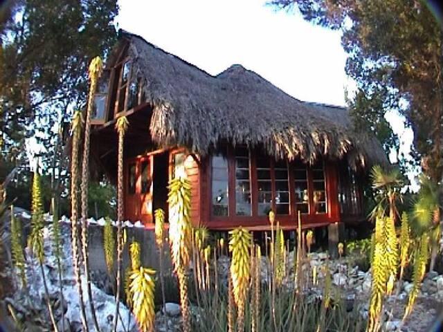 Bob Marley House and Garden Historical Site
