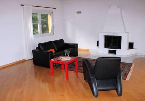 Spacious 2 1/2 room penthouse near Lugano
