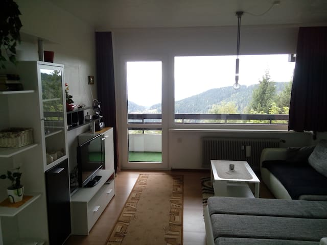 Apartment with sauna, swimming pool, ski resort - Retschitz - 公寓