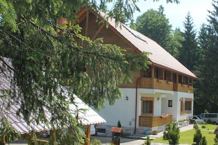 Apartament in Vartop Arieseni Apuseni