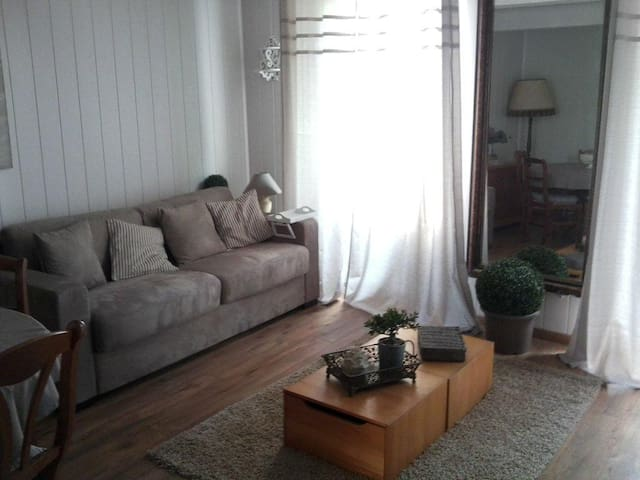 APPARTEMENT T2 AU COEUR DE BARCELONNETTE - Barcelonnette - Apartment