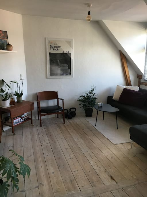 Living room section