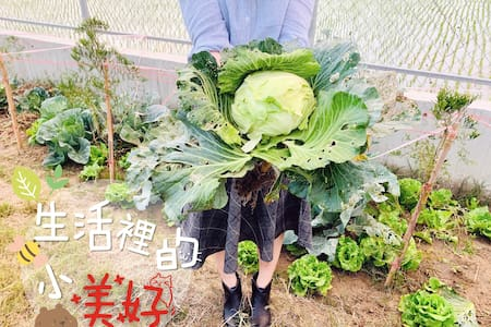 《The Green House》田園風光—烏山頭水庫 親水公園「夏天玩水趣」6~12人超大空間包棟