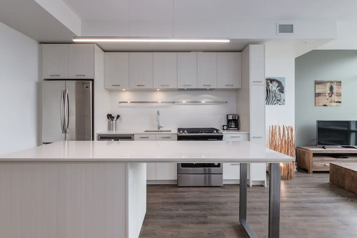 Brand new 1BR in Downtown in Desirable Mission