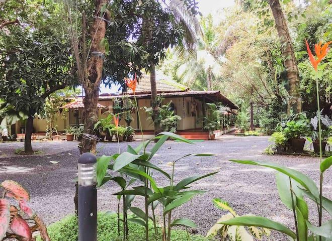 Palm Grove Service Villa-Non A/C Room@budget price