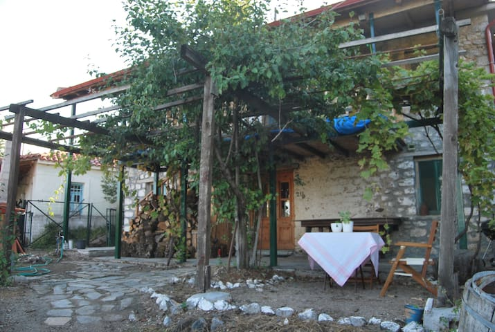 Παραδοσιακό σπίτι, Παύλιανη
