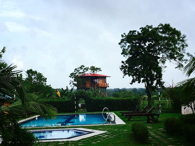 Treehouse living in Sigiriya - Sigiriya - Boomhut