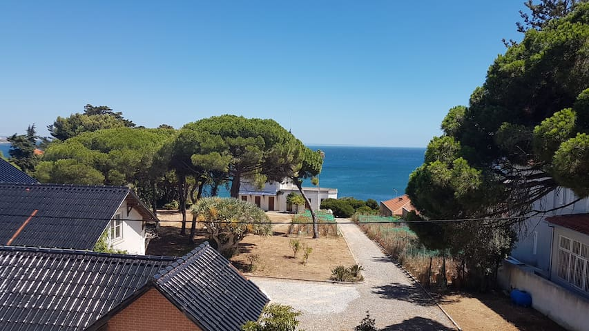 Sea view vintage flat, 5 min from the beach front
