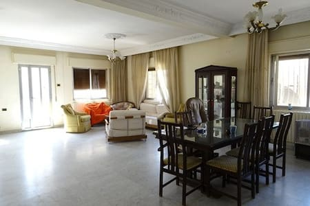 Centrally Located Sunny Spacious Apartment - Apartment