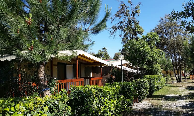 Chalet near beach of toscane, from €225 a week.