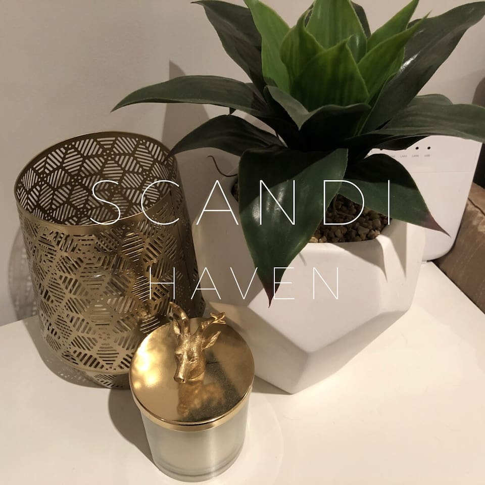 Scandi Haven in the City