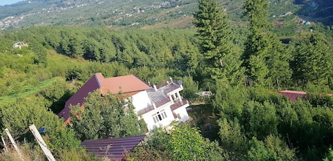 Property in middle of Apple Orchad with great view