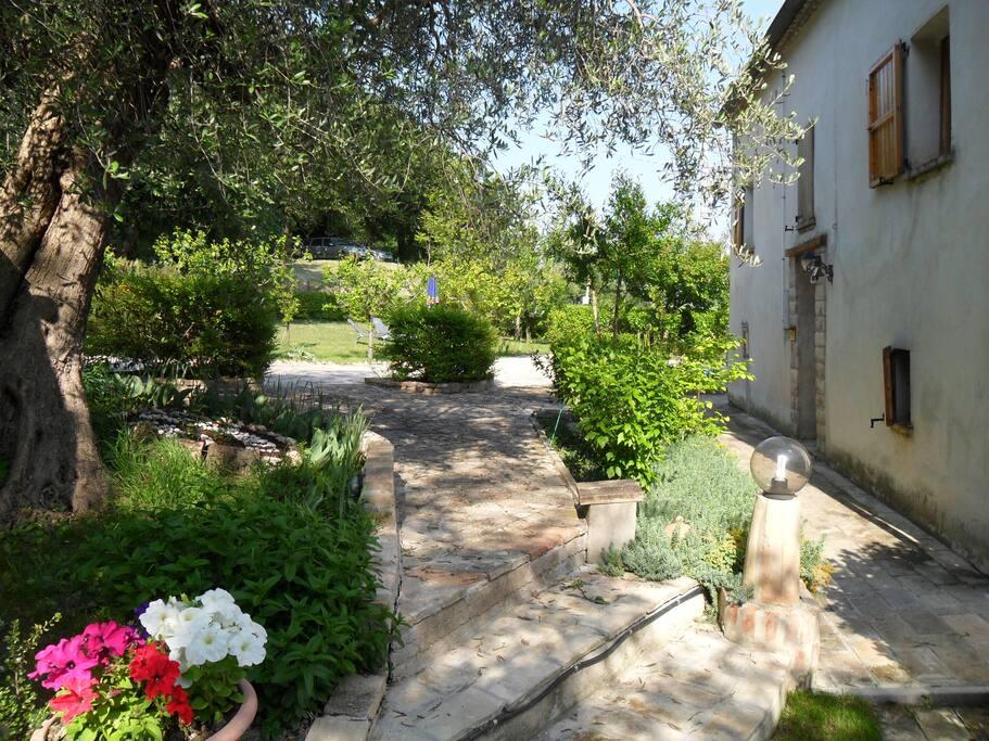 Dimora rustica in campagna case in affitto a corinaldo for Piani di casa ranch unici
