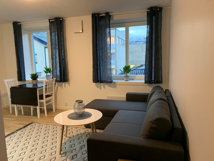 Ny leilighet med høy standard