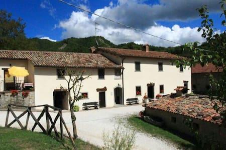 Appartamento Tramonto Rosa - Borgo Pace - Bed & Breakfast