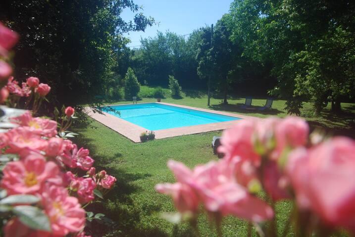 Villa  Coltifredi - Canaiolo