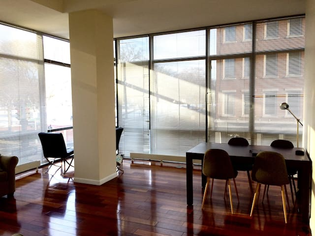Private room in modern apartement at The Green - New Haven - Apartment