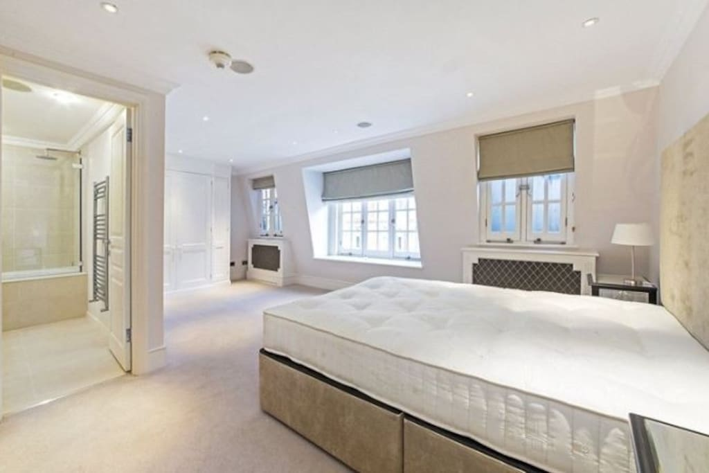 Spacious master bedroom with attached ensuite toilet / shower