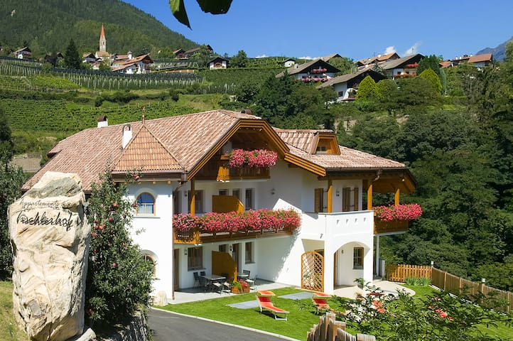 """Cosy holiday apartment """"Tischlerhof - Typ A mit Balkon"""" with Wi-Fi, balcony and mountain view; parking available"""